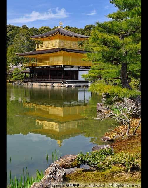 Красивые фото Японии (14)
