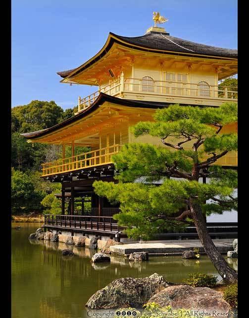 Красивые фото Японии (10)