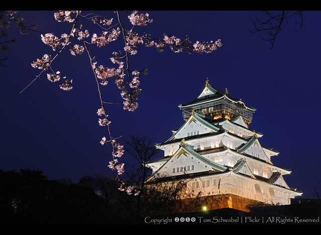 Красивые фото Японии (9)