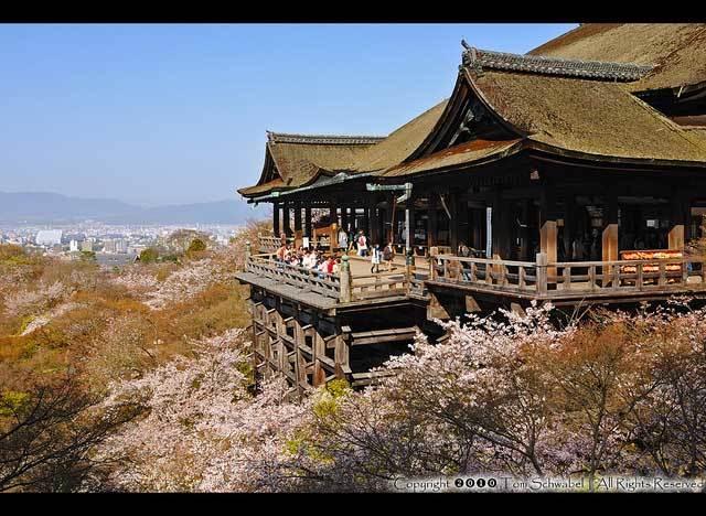 Красивые фото Японии (4)
