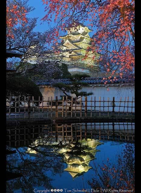 Красивые фото Японии (18)