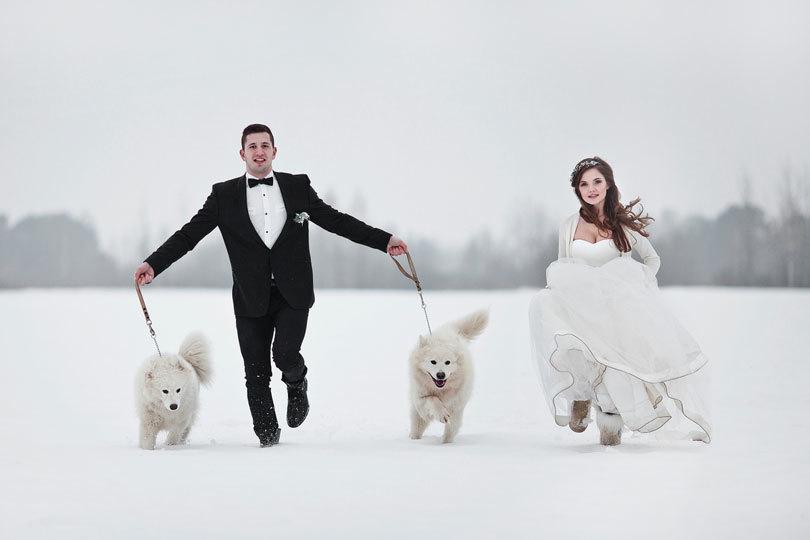 Реквизит на свадьбу на фотосессию