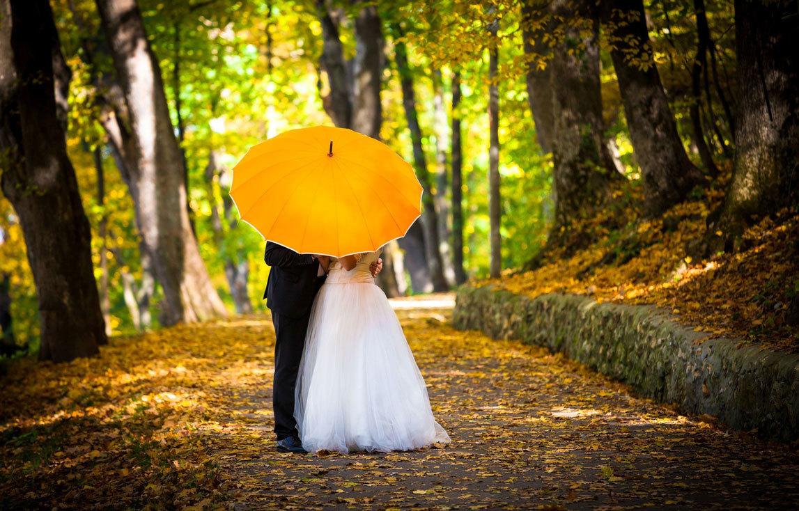 Жених и невеста под большим желтым зонтом в парке