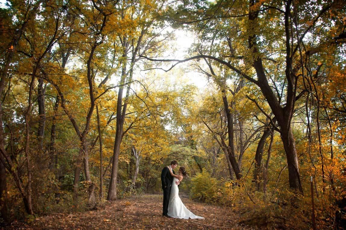 Свадебные фотосессии в осеннем лесу
