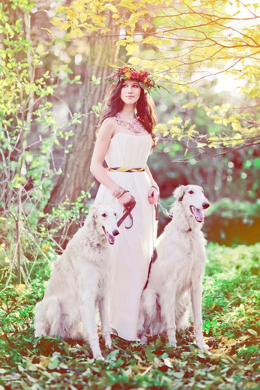 осенняя свадебная фотосессия с собаками