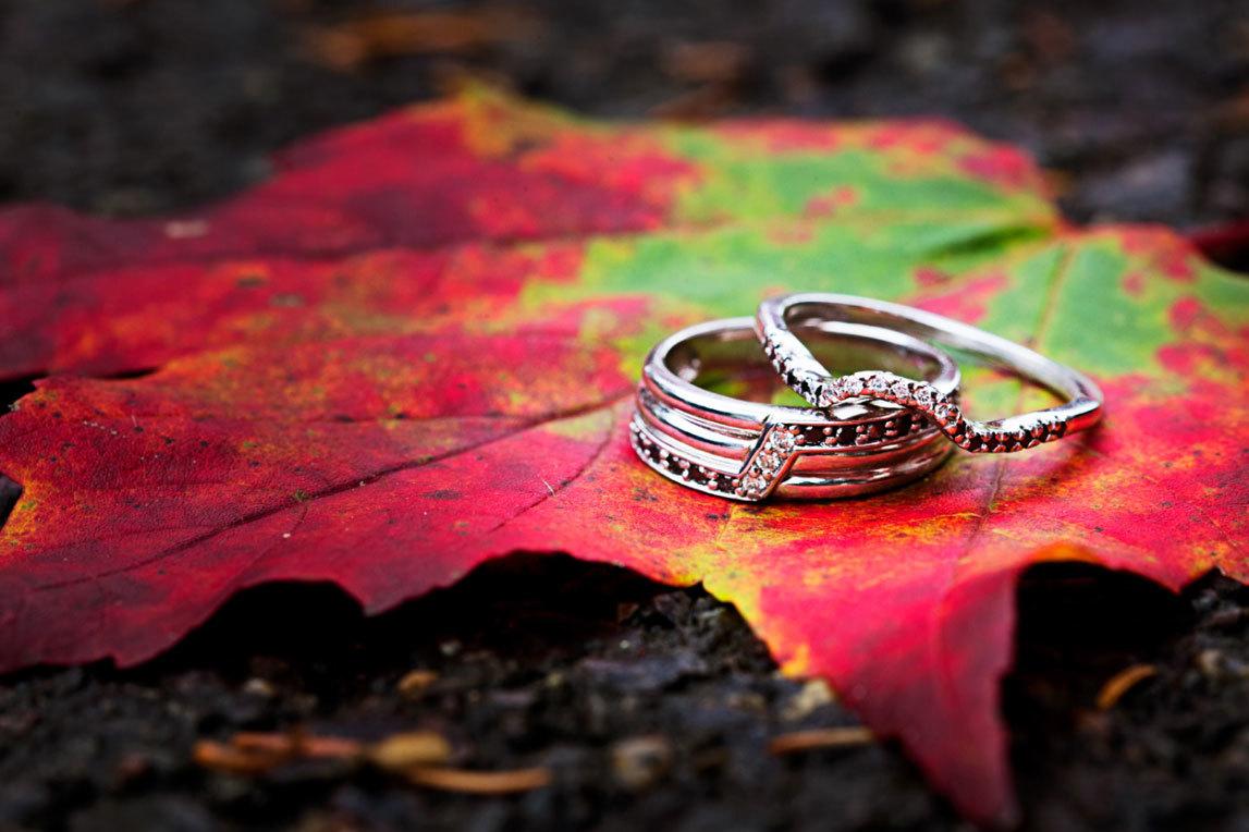 свадебные кольца на осенних листьях